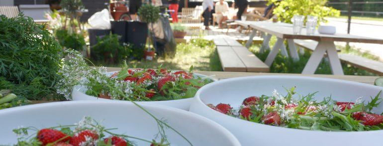 Erdbeeren-Blüten Salat komplettieren das Sommerfeeling.