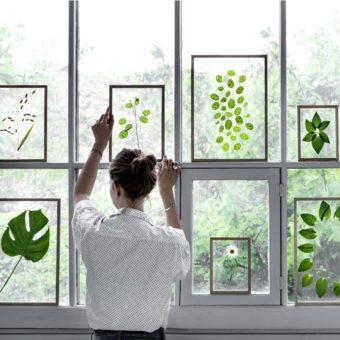 Holz-Glas-Bilderrahmen FRAME von Moebe